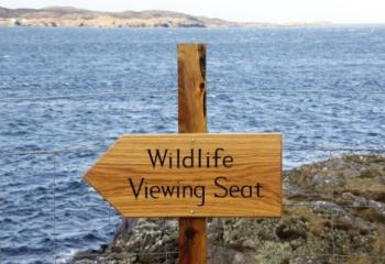 Wildlife Viewing Seat sign Cornwall